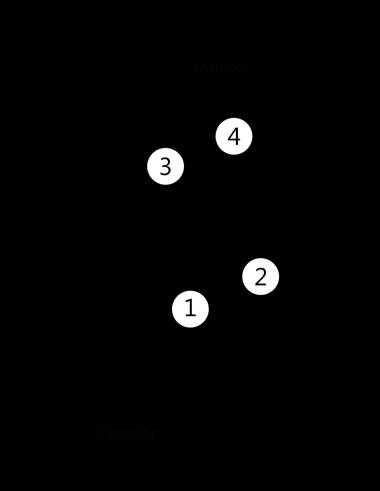image 2 1 1